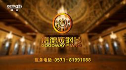 【中视百纳案例】嘉德威钢琴与央视牵手 传承百年造琴精髓